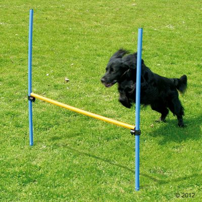 Fun & Sport Dog Agility Hurdle - 1 x Hurdle