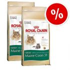 Royal Canin Maine Coon 31 - Economy Pack: 2 x 10 kg