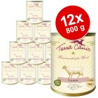 Terra Canis 12 x 800 g Saver Pack - Rabbit with Courgettes, Amaranth