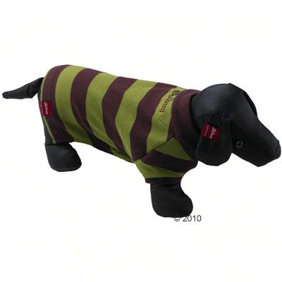 Rodney Dog Polo Shirt Pique Stripes in brown/almond - Size L : 28 cm back length