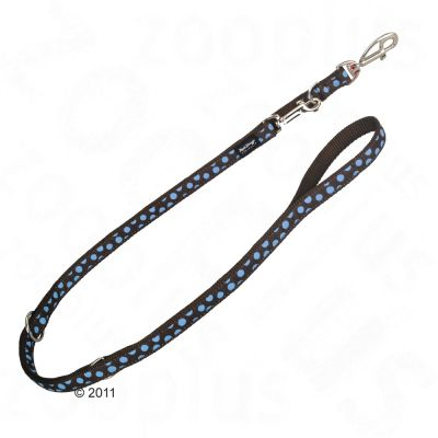 Red Dingo adjustable Dog Lead brown with blue spots - 200 cm long, 12 mm width