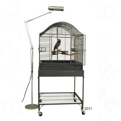 Lampe sur pied pour oiseaux AvianSun Deluxe de Zoo med-  l 22 x H 176,6 cm