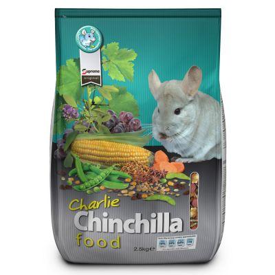 Charlie Chinchilla - 2.5 kg