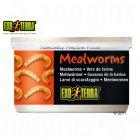 Hagen Exo Terra Mealworms - 34 g - Reptile Supplies