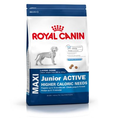 Royal Canin Maxi Junior Active - Economy Pack: 2 x 15 kg