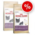 Royal Canin British Shorthair 34 - Economy Packs: 2 x 10 kg