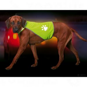 Safety-Dog gilet di sicurezza per can...