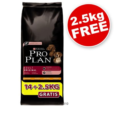 Pro Plan Bonus Bag 14 kg + 2.5 kg Free! - Puppy Large Athletic Lamb & Rice (16.5kg)