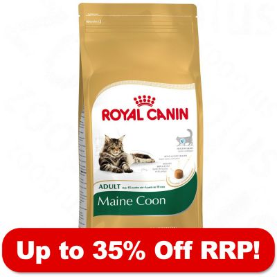 Large Bags Royal Canin Breed - up to 35% Off RRP!* - Maine Coon Adult (10kg)