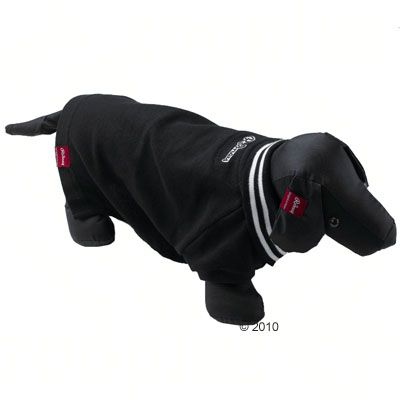 Rodney Dog Polo Shirt Pique Solid in black - Size M : 24 cm back length
