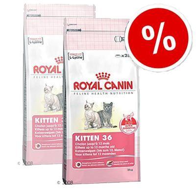 Royal Canin Kitten 36 - Economy Pack: 2 x 10 kg