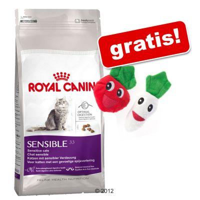10 kg Royal Canin + Katzenspielzeug