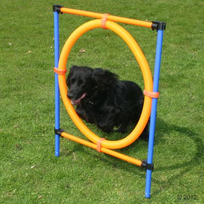 Fun & Sport Dog Agility Jumping Hoop - Diameter 55cm
