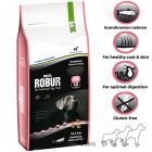 Bozita Robur Genuine Salmon & Rice 20/10 - 2 kg