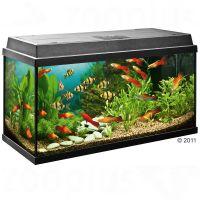 Juwel Aquarium Rekord 800 - - zwart