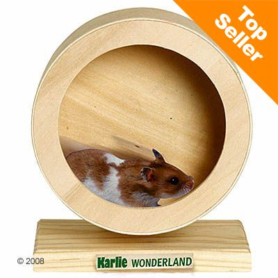 Wonderland Wooden Exercise Wheel - 29 cm