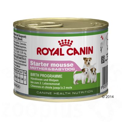 Royal Canin Starter Mousse Mother & Baby - Saver Pack: 12 x 195g