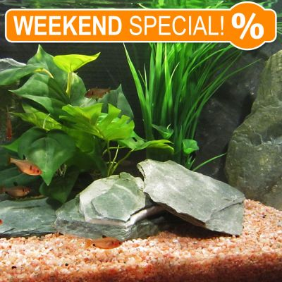 Green Slate Aquarium Decoration - 1-4 stones, 2 kg