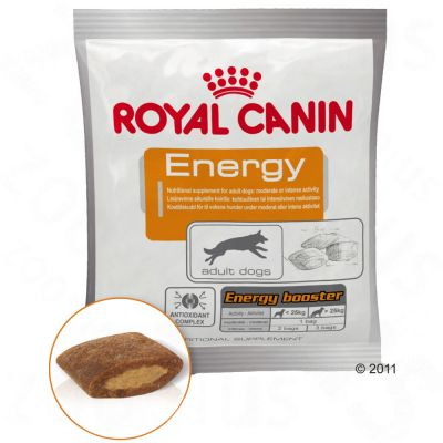 Royal Canin Energy Belohnungssnack - 4 x 50 g