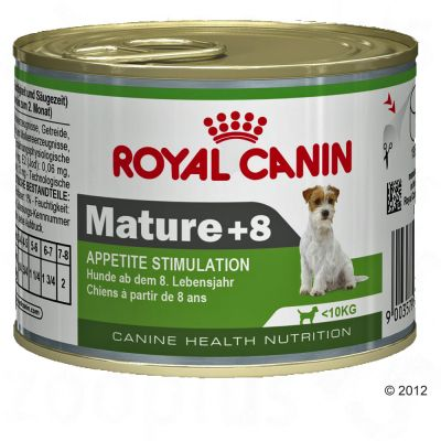 Royal Canin Wet Mini Mature 8+ - Appetite Stimulation - Saver Pack: 12 x 195g