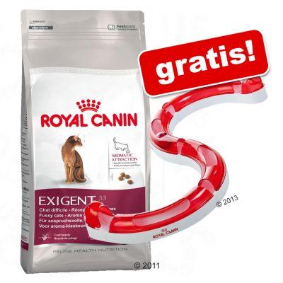 Katzenfutter trocken - Royal Canin