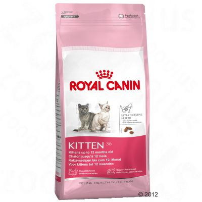Royal Canin Kitten 36 - Economy Pack: 2 x 10 kg