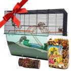 Gift Set: Nibble Log & Fruity Fun - 3-piece set