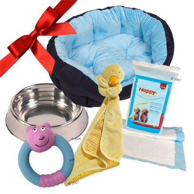 Puppy Gift Set: Baby Boy Blue - 5 piece set