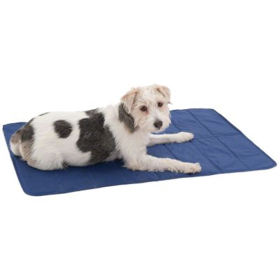 Keep Cool Dog Mat - 90 x 60 cm (L x W)
