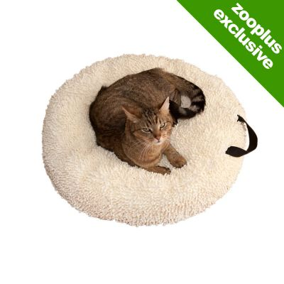 Cat Cushion Catmaxx Cream - 70 x 70 cm (L x W)