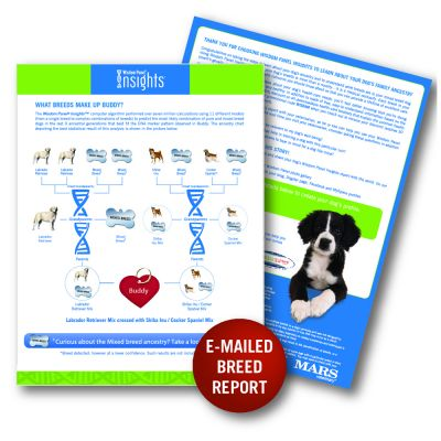 Wisdom Panel Insights Dog DNA Test Kit - Mixed Breed