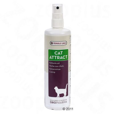 Versele-Laga Cat Attract Catnip Spray - 200 ml