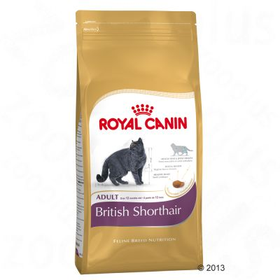 Royal Canin British Shorthair Adult - 4kg