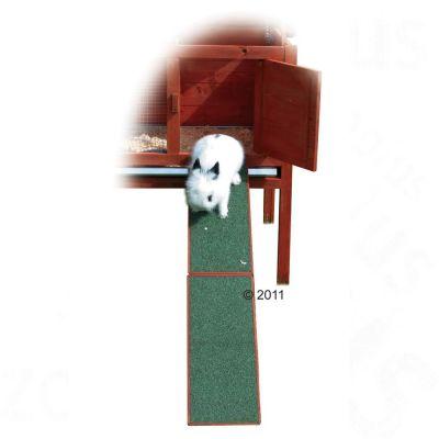 Rampe en bois pour clapier a lapin - L 50 cm