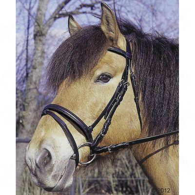 Bridon Standard avec rênes- cheval, noir