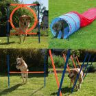 Agility Fun & Sport Set complet