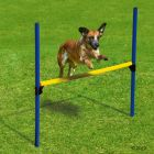 Agility Hurdle Set