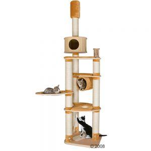 Construire son propre arbre chat forum sur les chats - Construire un arbre a chat ...