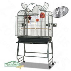 Taille minimum d'une cage pour un couple d'ondulée. 42412_wagners_brazil_042011_9