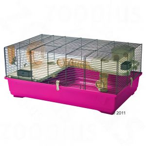 momes animaux cage futur hamster sujet