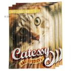 Catessy Sticks - 3 x 5 Pack