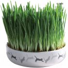 Ceramic Cat Grass Bowl