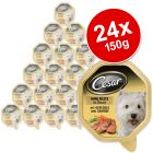 Cesar in Sauce Savings Pack 24 x 150 g