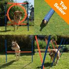 Complete Dog Agility Course