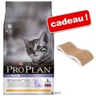 Croquettes Pro Plan 10 kg + griffoir  Vague offert !