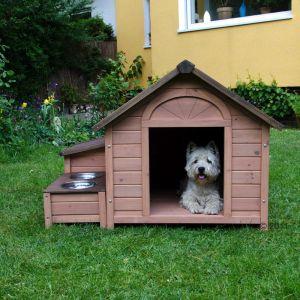 cucce per cani fai da te offerte e risparmia su ondausu