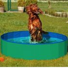 Doggy Pool