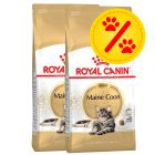 Doppelpack Royal Canin Feline Breed