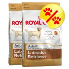 Doppelpack Royal Canin Labrador Retriever Adult