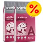 Dubbelpack Briantos Adult Active